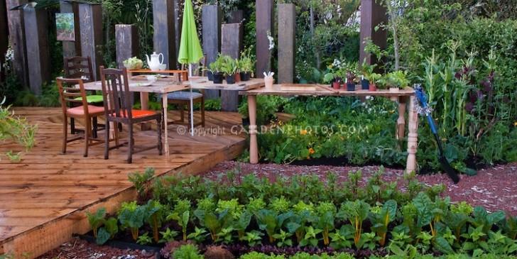 Backyard Farm Vegetable Garden