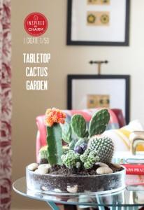 สวน Cactus15