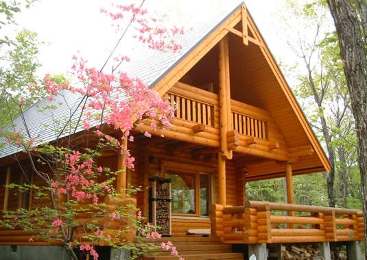 แบบบ้านไม้ไผ่สวย